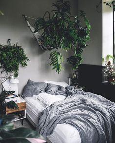 sovrum, växt ovanför sängen