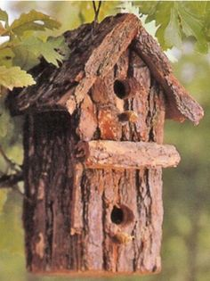 """BARK~BIRD~BOX"""