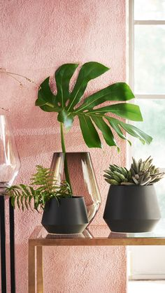 Bring nature inside with our beautiful selection of pots and vases. | H&M Home