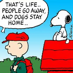 Don't go Charlie Brown