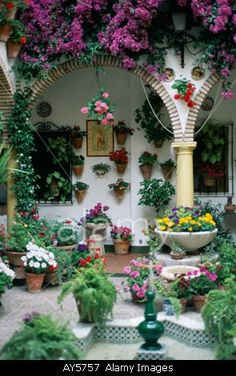 Cordoba May Patio contest festival Andalucia Andalusia Spain Flowers Galore Courtyard -   SEE more images at Spain courtyard and patios Board