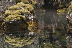 Islanti: Saaren kiertäjän matkaopas