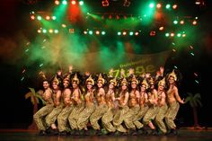 Tanzwiesel vom KVC