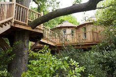 The Treehouse at Harptree Court - Somerset. A fabulous, sky high, en suite bolthole, beautifully handcrafted and filled with beautiful things.