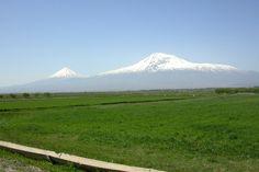 Ararat from Ararat