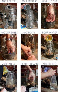 INSTRUCTIONS SO MAKE A MASON JAR AQUARIUM DIY Mason Jar Aquarium....