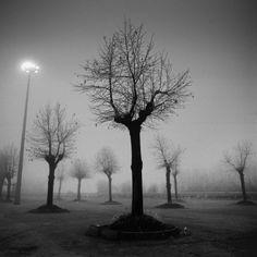 I cavalieri e il diradarsi della nebbia