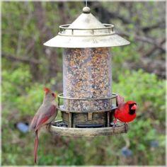 Mangeoire à oiseaux Marque d'Avant Garden®