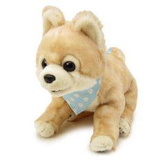 ぬいぐるみ M ポメラニアン 俊介(犬):1215-037879-12:キャラクター ...
