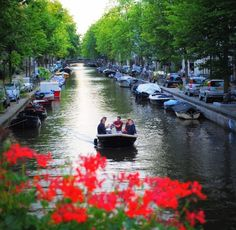 What Type of Amsterdammer Are You? (Visitors Also Count! Visit Amsterdam, Amsterdam Travel, What Type, Venice, Netherlands, Holland, Travel Inspiration, Dutch, Things To Do