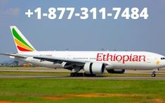 ethiopian airlines booking offers two cabins: Economy and Cloud Nine which is the business class. The airline serves in-flight meal on all its flights consisting of hot and cold meals and snacks along with beverages depending on the length of the flight.