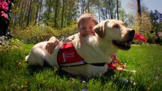 Danny has Down syndrome and needs his service dog Simon for emotional companionship both in the home and in public.