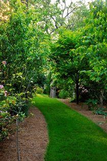 Roanoke - Historic Garden Week in Virginia