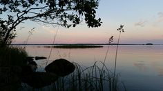 #rönkönvaara #savonranta #nature #finland #summercottage