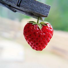 #Heart #strawberry