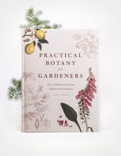 Practical Botany for Gardeners is a beautifully illustrated botanical reference book that explains and explores over botanical terms. Vintage Library, Vintage Books, Antique Books, Book Cover Design, Book Design, Design Design, Botany Books, Graphic Design Magazine, Magazine Design