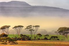 Mount Chester in the mist from the Ravensthorpe Range in Western Australia
