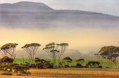Ravensthorpe Range, Western Australia
