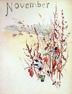 November - Morning Earth Artist/Naturalist Edith Holden