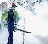 Looking for mosquito control services in Delhi? Mourier pest control gets its superior and efficacious mosquito control service for you. Say bye-bye to mosquitoes and live safely.