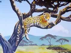 jaguar in acacia tree