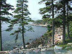 Seeufer im Acadia Nationalpark Acadia Nationalpark 600 Nationalparks USA
