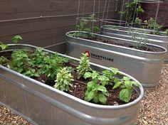 water trough raised garden bed