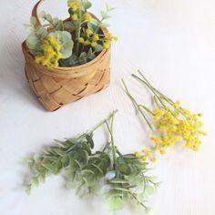 Planter Pots, Herbs, Interior, Indoor, Herb, Interiors, Plant Pots, Spice
