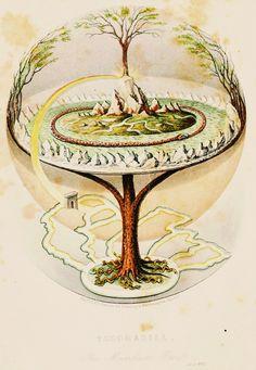 """Saiwa Muora"" or ""Saiva Moura"" (Sami language: i.e. Holy Tree) & Yggdrasil from Nordic Mythology. Are there several similar mythologies in t..."