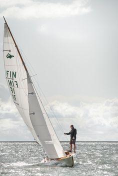 Daysailor can sail