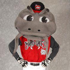 Carolina Mudcats Mascot | Ranking Minor League Mascots – Carolina League
