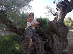 Seyahat etmeyi bir sanat olarak gören Nazlı Gürkaş, Zeytin Ağacının Gölgesinde Yunanistan kitabıyla size hayalinizdeki yolculukta rehberlik ediyor.