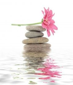 3142953-terapeutica-zen--spa-pietre-con-fiori-isolati.jpg (1023×1200)