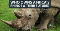 In the news – The True Green Alliance Hippopotamus, Horn, Wildlife, Elephant, African, News, Animals, Wedding Ring, Animales