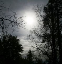 I want there to be a gray-scale night sky in my landscape.