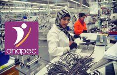 Offre d'emploi a Anapec El jadida: cherche 60 Operateurs Contrat de Travail: Contrat d'insertion (contrat anapec) Date de début : 03/04/2017...