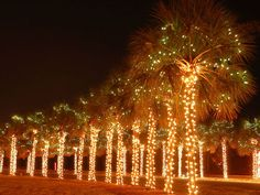 James Island Lights Beauteous Top 10 Holiday Celebrations  Holiday Festival Lights And Decorating Design