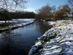Vinnyman's Birding and Nature Blog.: Babbs Mill Nature Reserve, Kinghurst.