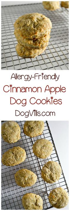 DIY Pets : We have another delicious hypoallergenic dog treat recipe for you today for your pooch with allergies! Fido is going to love our cinnamon apple dog cookies! They smell SO good when theyre baking you might be tempted to take a bite yourself Homemade Dog Treats, Healthy Dog Treats, Dog Treat Recipes, Dog Food Recipes, Hypoallergenic Dog Treats, Food Dog, Puppy Treats, Dog Cookies, Dog Biscuits