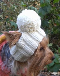 For dogs/pet hats/ Cap for girl dogs/winter от LyudmilaHandmade
