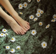 all good things in life are wild and free Daisy Love, Daisy Girl, Eleonore Bridge, Hand Drawing Reference, Flora Flowers, Poses For Pictures, Wild And Free, Life Is Beautiful, Barefoot