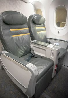 """Flying Low Cost to Asia: Onboard Scoot's ScootBiz Garden; a closed (enclosed) space unit, the Latin """"Hortus conclusus"""", is a … European Travel, Asia Travel, Travel Tips, Boeing 787 Dreamliner, Empire Romain, Rectangular Pool, Singapore, Traveling By Yourself, Kiwi"""