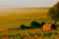 Antik Vendégház az Őrségben - www.orseg-szallas.hu: TOP 20 hajnali kép az Őrségről Hungary, Photo Sessions, Country Roads, Nature, Naturaleza, Nature Illustration, Off Grid, Natural
