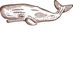 Detailed Whale Rubber Stamp