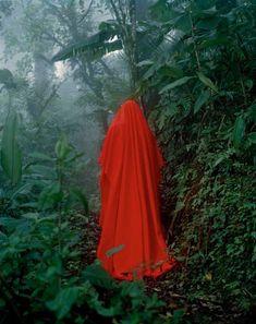 z.t. (Costa Rica), 2005 Elspeth Diederix