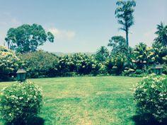 Four Seasons Santa Barbara wedding venue #sb #weddings