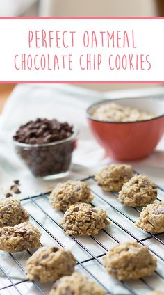 This is the best, softest, chewiest oatmeal chocolate chip cookies recipe ever! One bowl, chilled dough optional! Oatmeal Chocolate Chip Cookie Recipe, Best Oatmeal Cookies, Cookie Recipes, The Best, Breakfast, Desserts, Food, Morning Coffee, Meal