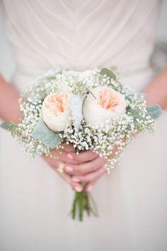 Peach garden rose, baby's breath and dusty miller bouquet {Petals Couture - Dallas-area Florist}                                                                                                                                                                                 More