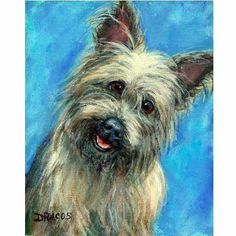 Cairn Terrier Original Acrylic Painting 8x10 Happy by DottieDracos, $65.00