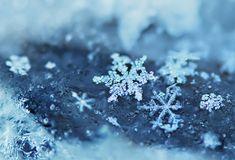 diminutos copos de nieve